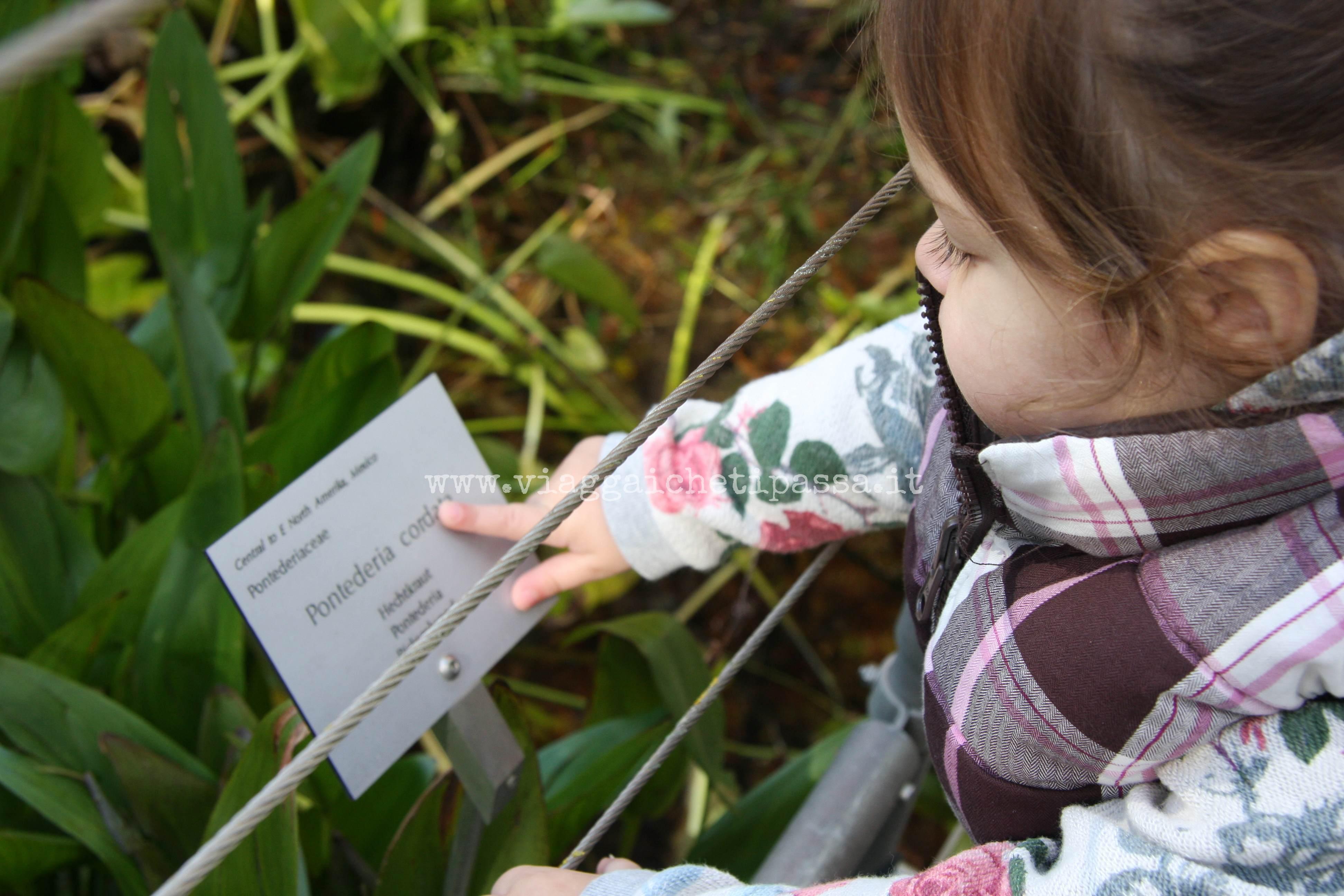 Itinerari D 39 Autunno Con Bambini Giardini Di Sissi A Merano